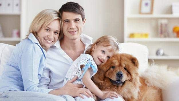 Wills & Trusts dog-young-family Direct Wills Earl Shilton